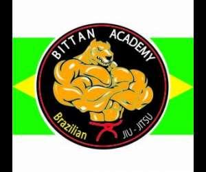 Bittan academy