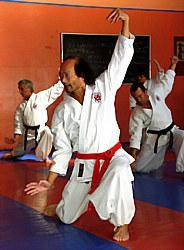 NANBUDO A PARIS 20EME ARRONDISSEMENT | Arts martiaux ? Paris 20eme Arrondissement Clubs de sport