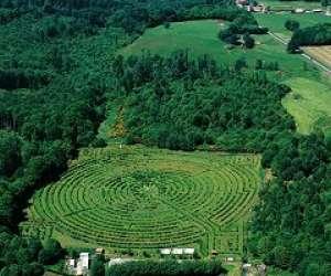 Le labyrinthe géant du massif forestier de chabrière
