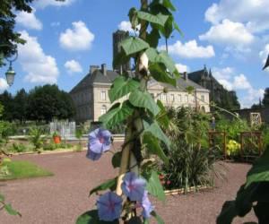 Les jardins de l