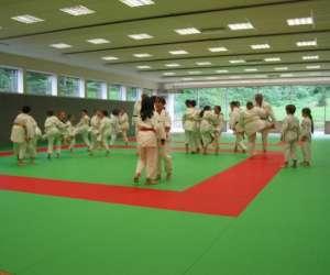 Uchu judo