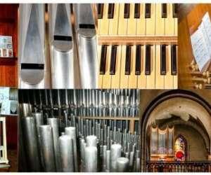 Au bord des orgues