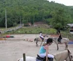 Centre equestre l