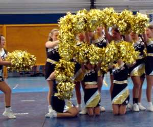 Fanatic-cheer 19