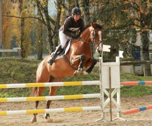 Centre equestre castres borde basse