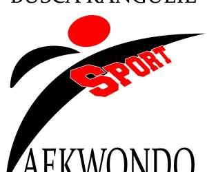 Rangueil / busca sport taekwondo