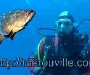 Ecoles de plongee - merouville.com - guy blanchet et ni