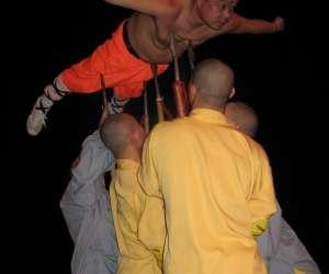 Shaolinsikungfuwushuquan