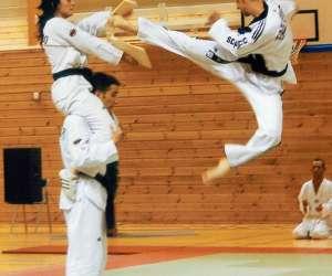 Association sportive taekwondo sonmudo millau