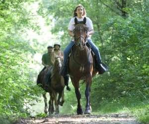 Centre equestre,tourisme equestre