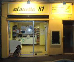 Alouette81  épicerie de nuit