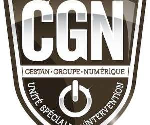 Cestan groupe numerique