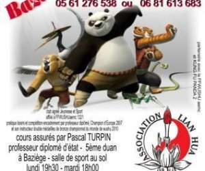 Association  lian hua wushu  kung fu  -  taiji chuan
