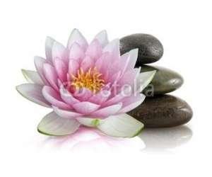 Line leroy - massage bien-etre