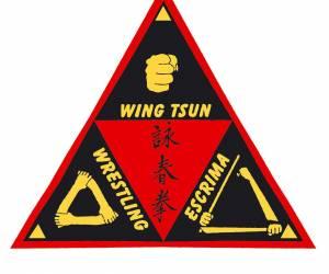 Progressive wing tsun system