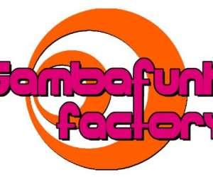 Sambafunk  factory  -  cours de samba  et batucada
