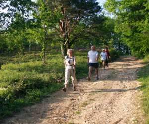 """Marche nordique avec """"circuits nature"""""""
