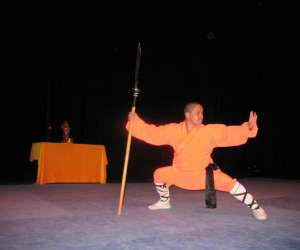 Ecole shaolin kung fu shi miaofeng