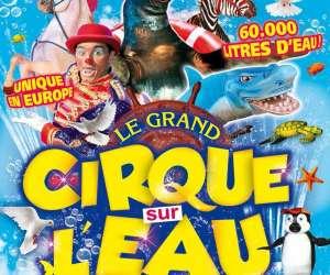 Cirque sur l