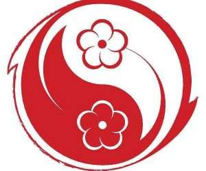 Wing chun - wing tsun / qi gong / yoga / jkd / kali