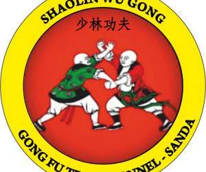 Shaolin wu gong