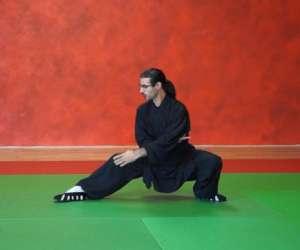 Kung fu wushu albi, asso 3.2.1. do it