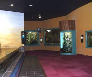 Aquarium lourdes