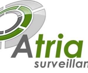 Atria surveillance