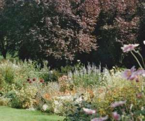 Pepiniere entre campagne et jardins