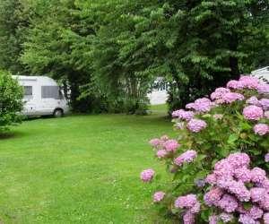 Camping hortensias