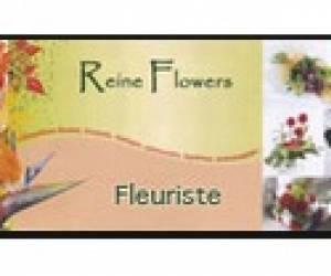 Reine flowers
