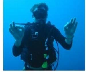 Au vieux plongeur