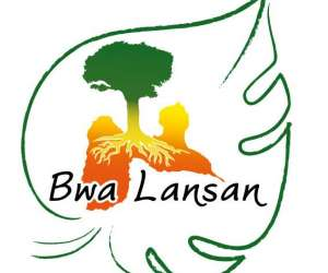 Association bwa lansan