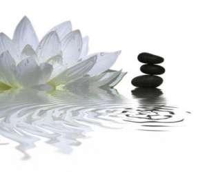 Primavera massage et plenitude