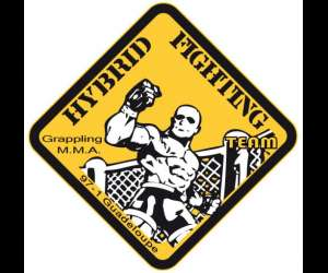 Hybrid fighting team