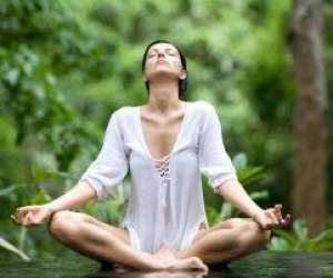 Prana energy