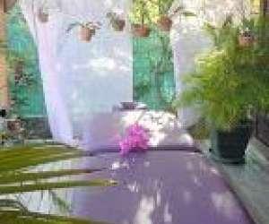 Massage de bien-etre - les fleurs de sens