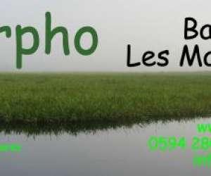 Le morpho s.a.r.l.
