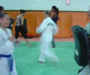 Institut taekwondo reunion