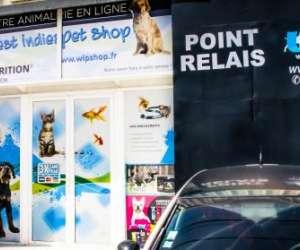 West indies pet shop