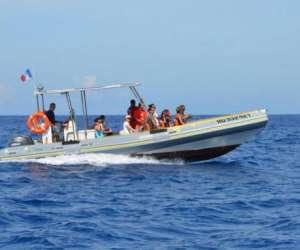 Cocoboat : sortie en mer