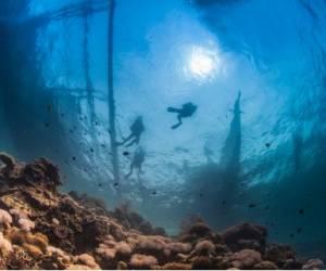 Club nautique anse des rochers
