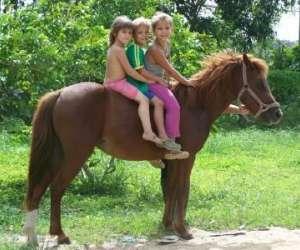 Ranch amazonia