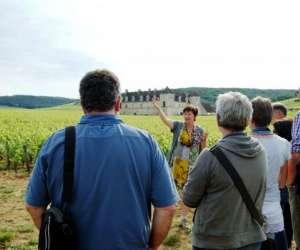 Clos de bourgogne , ateliers et balades oenologiques av