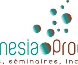 Magnesia process