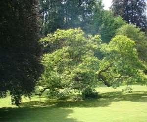 Abbaye de beze, son parc et son jardin de fleurs