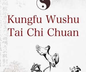Taichi chuan kungfu auxois