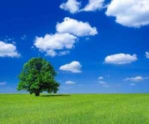 Naturopathie a domicile