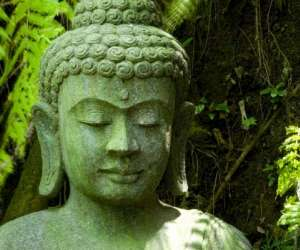 Corps et vie : massage de bien-être