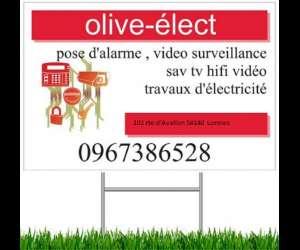 Olive-élect